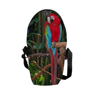 深紅のコンゴウインコのメッセンジャーバッグ メッセンジャーバッグ