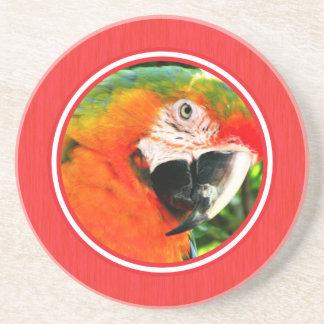 深紅のコンゴウインコの赤のコースター コースター