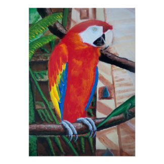深紅のコンゴウインコの野性生物の鳥のアマゾンジャングルポスター ポスター