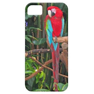 深紅のコンゴウインコのiPhone 5の場合 iPhone SE/5/5s ケース