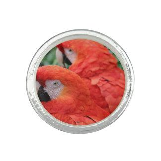 深紅のコンゴウインコ リング