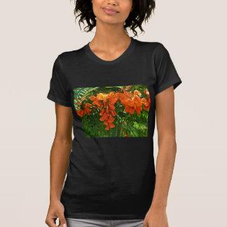 深紅の藤(Sesbaniaのpunicea) OBXのTシャツ Tシャツ