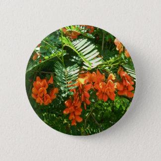 深紅の藤(Sesbaniaのpunicea) OBXボタン 5.7cm 丸型バッジ