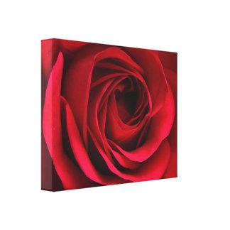 深紅の赤いバラのキャンバス キャンバスプリント