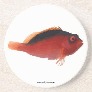 深紅のHawkfishのコースター コースター