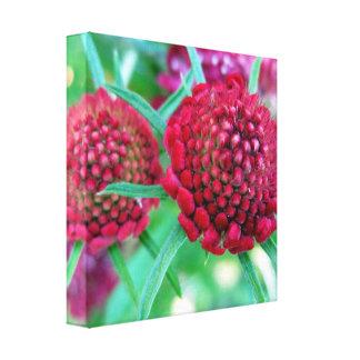 深紅色の野生花 キャンバスプリント