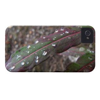 深緑色および赤の葉 Case-Mate iPhone 4 ケース