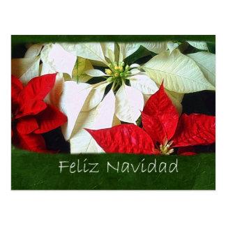 混合された色のポインセチア2 - Feliz Navidad ポストカード