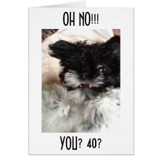 """混同したHAVANESEは信じることができませんです""""40"""" カード"""