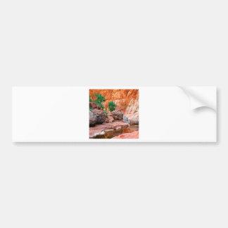 渓谷によって隠されるオアシスEl Cajon Bajaメキシコ バンパーステッカー