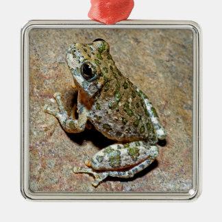 渓谷Treefrog メタルオーナメント