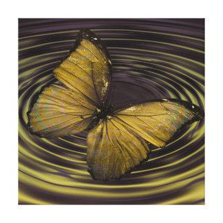 渦の背景のオリーブ色の蝶 キャンバスプリント
