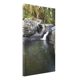 渦巻く石のプールCedar Creekオーストラリア キャンバスプリント