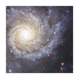渦状銀河よりきたない74 NGC 628 キャンバスプリント