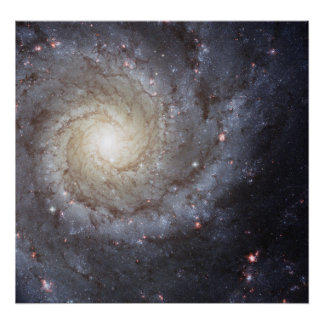 渦状銀河M74 ポスター