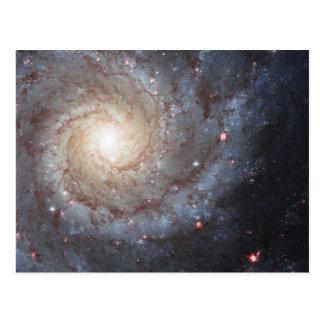 渦状銀河M74 ポストカード