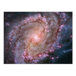 渦状銀河M83 ポストカード