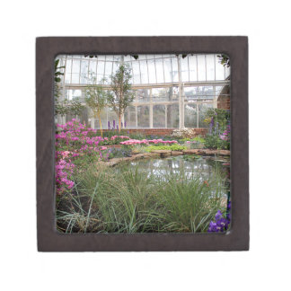 温室の栄光 ギフトボックス