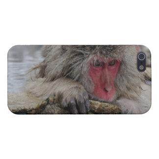 温泉にリラックスしている日本のな猿 iPhone SE/5/5sケース