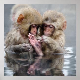 温泉、日本の小さい猿 ポスター