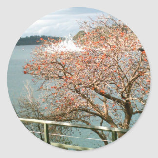 港の木 ラウンドシール