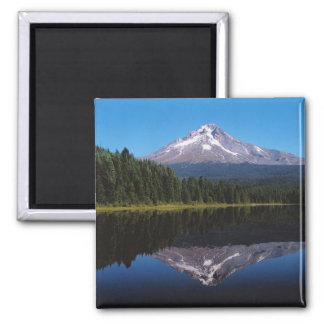 湖に反映される山のフード マグネット
