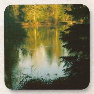 湖に反映する木 コースター