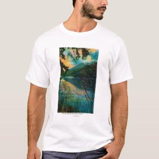 湖のサザランドの新しい港アンヘレス、WA Tシャツ
