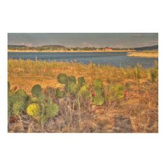 湖のサボテン ウッドウォールアート