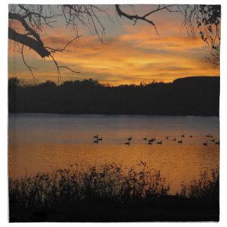 湖のスコットの州立公園の日没 ナプキンクロス