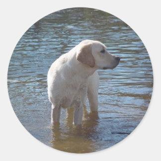 湖のラブラドル・レトリーバー犬のステッカー ラウンドシール