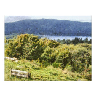 湖の海岸の高い薮 フォトプリント