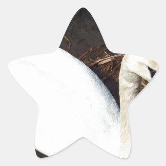 湖の白鳥 星シール