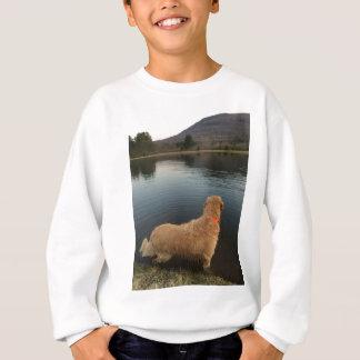 湖の石のゴールデン・リトリーバー スウェットシャツ