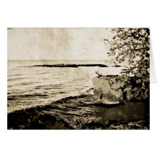 湖の自然 カード