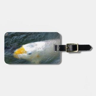 湖の金魚 ラゲッジタグ