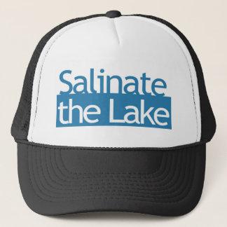 湖を塩溶化して下さい キャップ