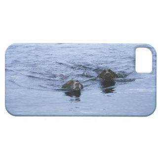 湖地区のcumbriaイギリス iPhone SE/5/5s ケース