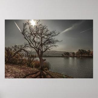 湖4のプリント ポスター