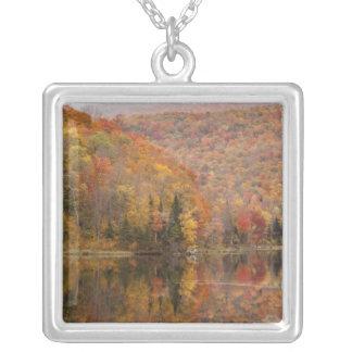 湖、ヴァーモント、米国2との秋の景色 シルバープレートネックレス