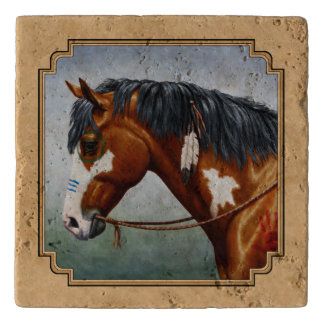 湾のインドの子馬のまだら馬の馬タン トリベット