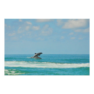 湾FLポスターで遊んでいる共通の野生のイルカ ポスター