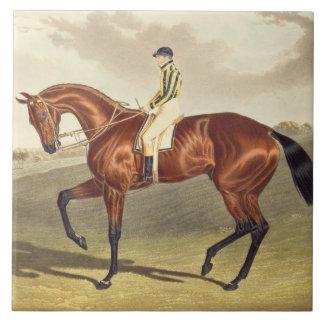 湾Middletonの1836年にダービーの勝者、後 タイル