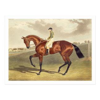 湾Middletonの1836年にダービーの勝者、後 ポストカード