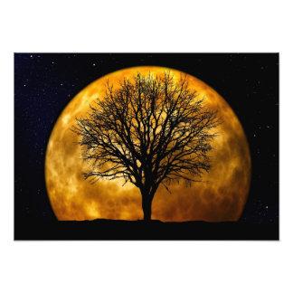 満月の真夜中の写真のプリント フォトプリント