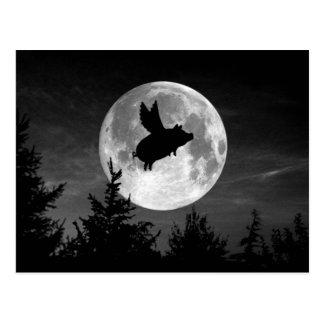 満月の飛んでいるなブタの郵便はがき ポストカード