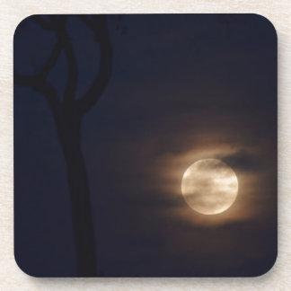 満月田園クイーンズランドオーストラリア コースター
