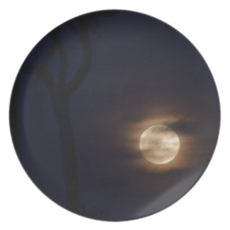 満月田園クイーンズランドオーストラリア プレート