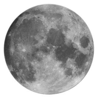 満月 ディナープレート