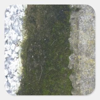 溝の屑 -- 具体的な溝が付いている粘着物 スクエアシール